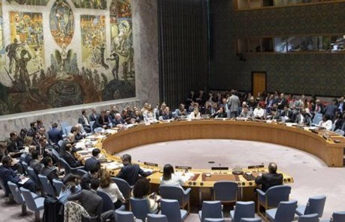قرار عاجل من مجلس الأمن الدولي بشأن الأحداث في ميانمار