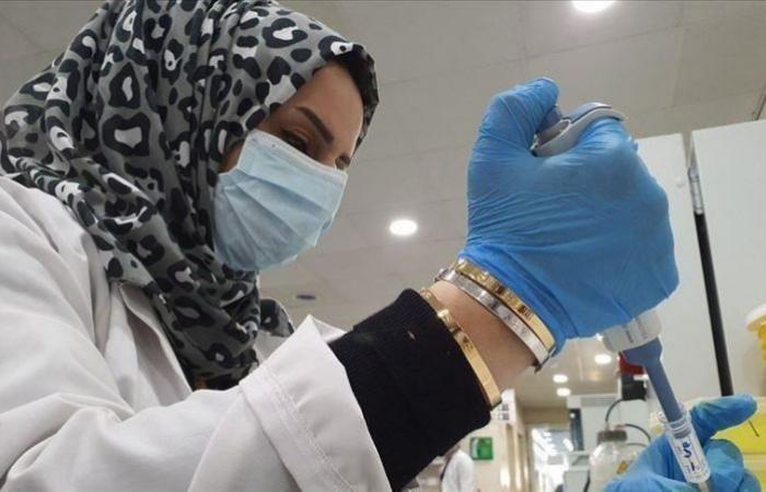 مصر تسجل 533 إصابة جديدة بفيروس كورونا