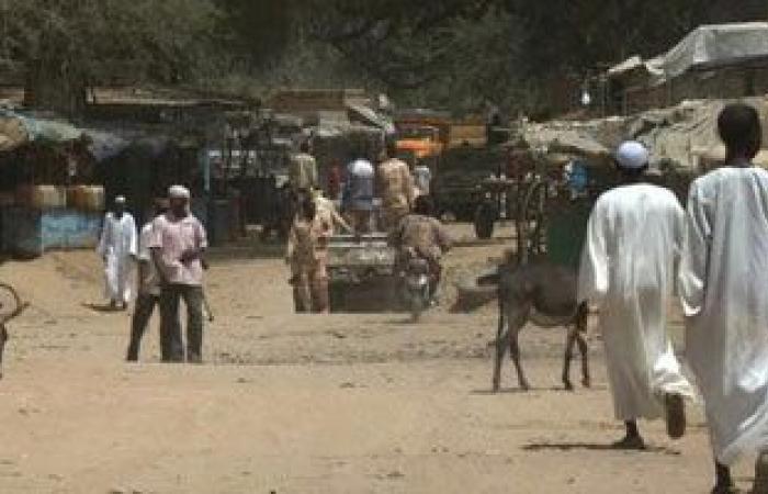 السودان: بحث الترتيبات الخاصة بتنفيذ اتفاق السلام الخاص بمسار دارفور