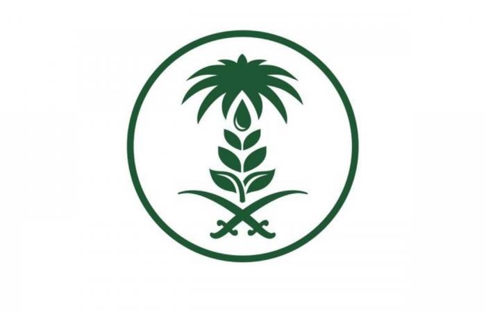 «البيئة»: 5 نصائح لترشيد الاستهلاك الغذائي
