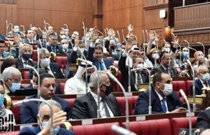 مجلس الشيوخ يوافق على تحصيل 20 قرشا بكل طن أسمنت وجنيه لطن الحديد لصالح المهندسين