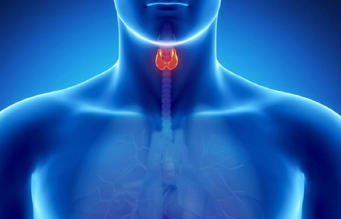 7 أعراض للإصابة بالغدة الدرقية منها جفاف البشرة وزيادة أو نقص الوزن