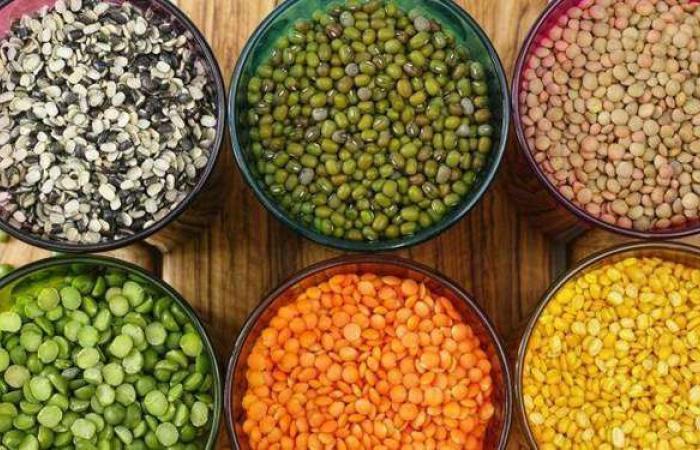 أسعار البقوليات اليوم 1-6-2021 في الأسواق المصرية