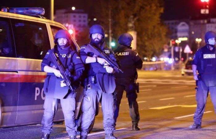 النمسا تكشف كواليس الإيقاع بشبكة لتهريب المخدرات اللبنانية إلى السعودية... فيديو