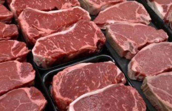الغرفة التجارية تؤكد استقرار أسعار اللحوم بسبب المعروض الضخم فى السوق