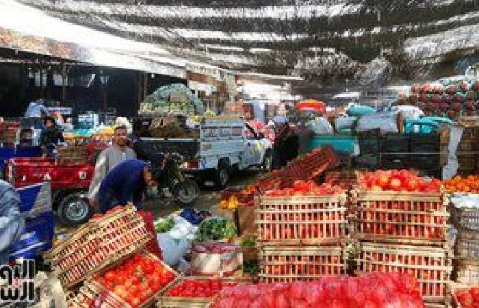 أسعار الخضروات الجملة اليوم.. الملوخية بين 2-4 جنيها للكيلو