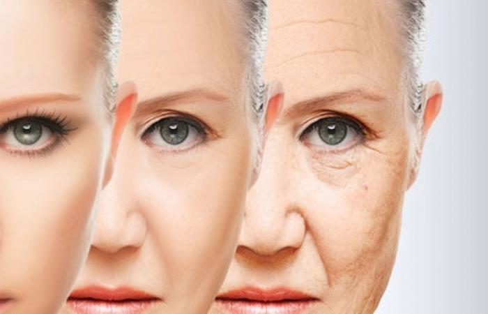دراسة: الشيخوخة تحددها عوامل بيولوجية وليست بيئية