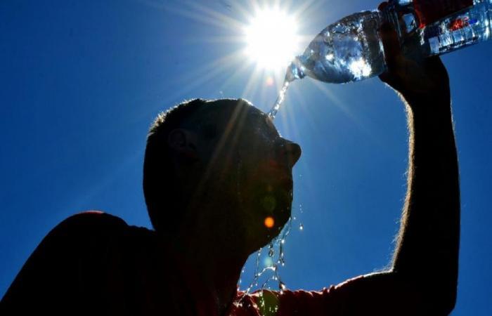 موجة حرارة قاسية في نصف الكرة الأرضية الشمالي.. ووفاة المئات