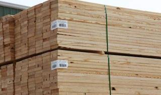أسعار الخشب اليوم 19 / 2 / 2021