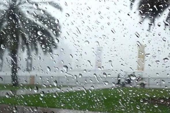 تنبيهات الأرصاد: ضباب وأمطار رعدية ورياح وأتربة على عدة مناطق