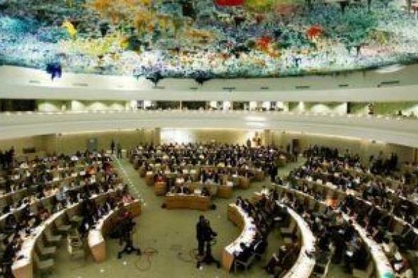 تعرف على الدور المصرى فى إطار المنظومة الدولية لحقوق الإنسان